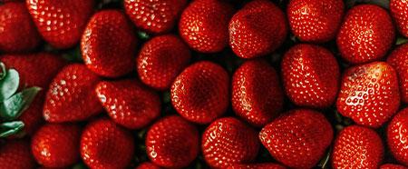Früchte 9